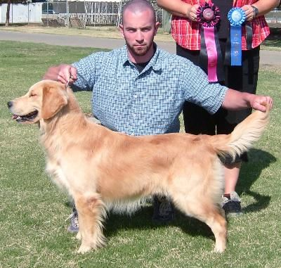 Remmy Best Of Breed & Group 1